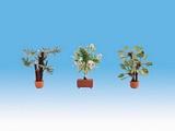 Noch NO14023 Mediterranean Plants for H0