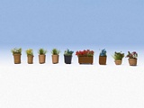 Noch NO14031 Flowers in Pots for H0