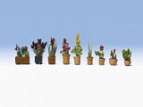 Noch NO14080 Ornamental Plants in Pots for N