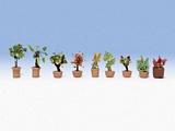 Noch NO14082 Ornamental Plants in Tubs for N