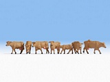 Noch NO15727 Cows brown for H0