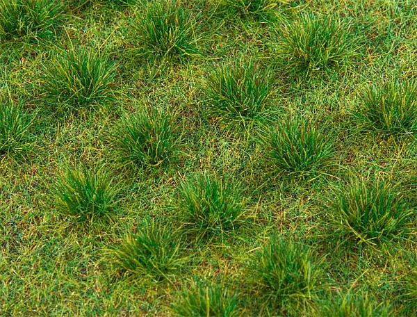 Faller 171396 Grass Tufts Dark