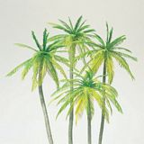 Preiser 18600 Palm trees 4 pieces in Kit